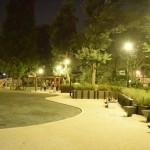 六本木西公園|リニューアルして使いやすくなって猫も戻ってきた