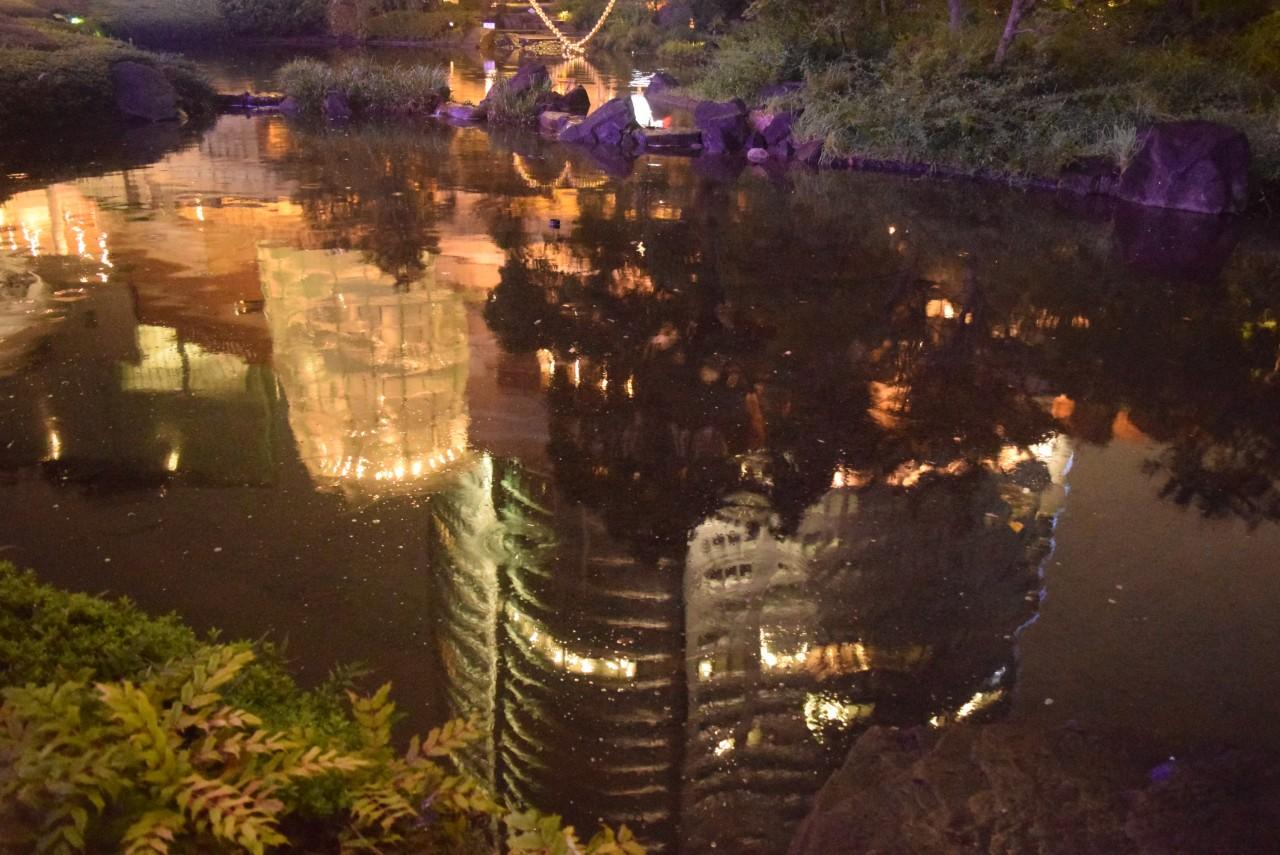 毛利庭園 夜景