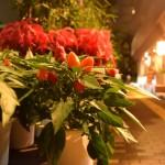 夜のお花屋さんの画像